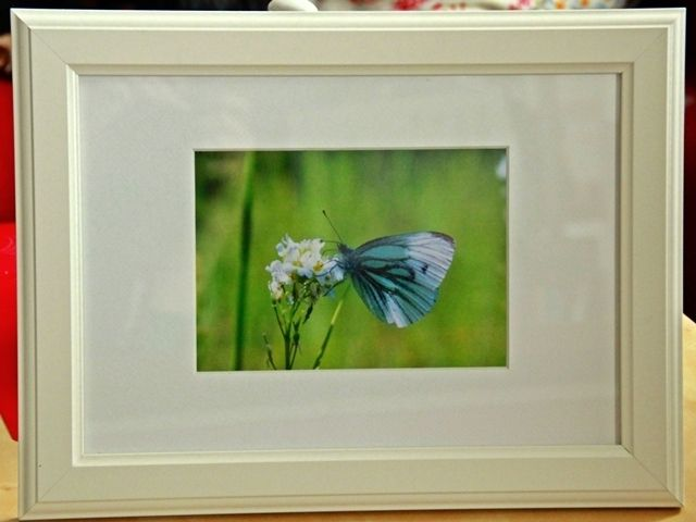Dieses Bild aus meiner Naturbilderserie (copyright art van arnhem!) ist bestens für romantische Mädchenzimmer geeignet.
