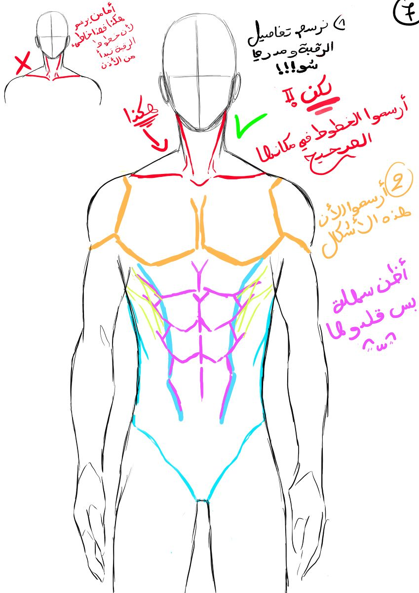 How To Draw Male Body 9 Male Body Drawing Guy Drawing Body Reference Drawing