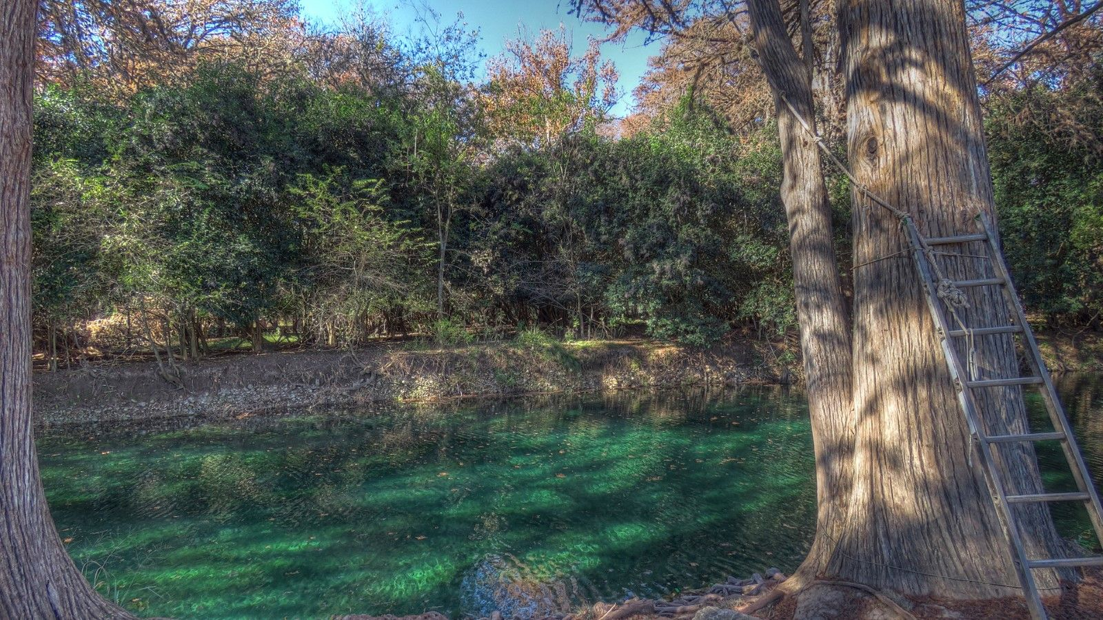 tx photos frio rootsrated water whitewater paddling white austin cabins rio