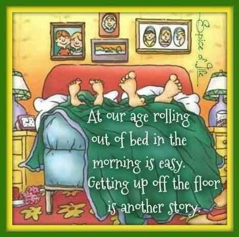 Image By Linda White Canfield On Quotes Sayings And Signs Senior Jokes Senior Humor Aging Humor