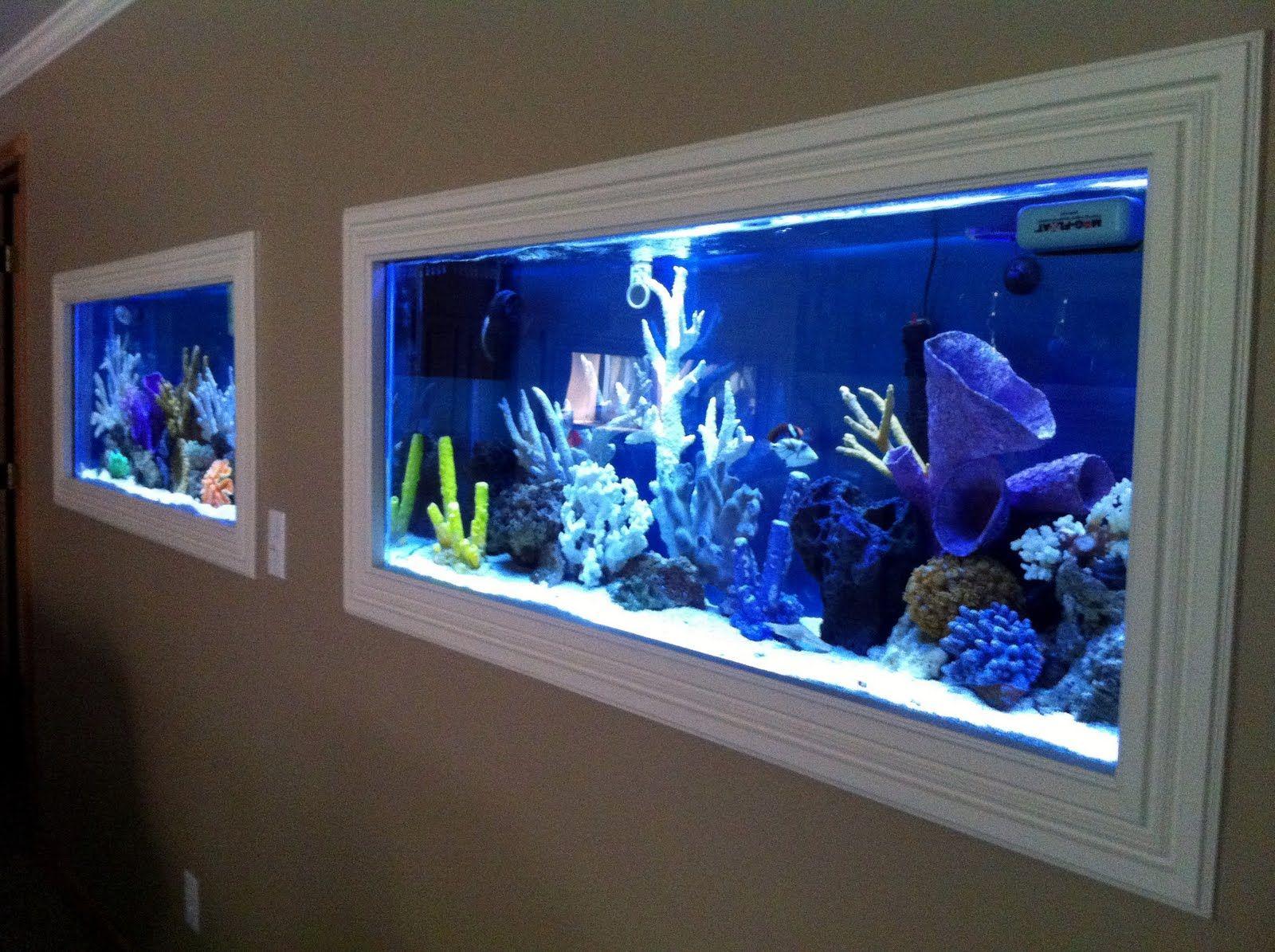 Furniture Fashion Presents 50 In Wall Aquariums