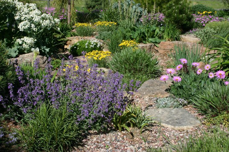 this landscape shot is in a very low water garden in northern colorado in late may repeating mounding forms in a variety of colors makes for a restful