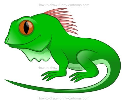 How To Draw A Cartoon Iguana Referencias De Autores Iguana