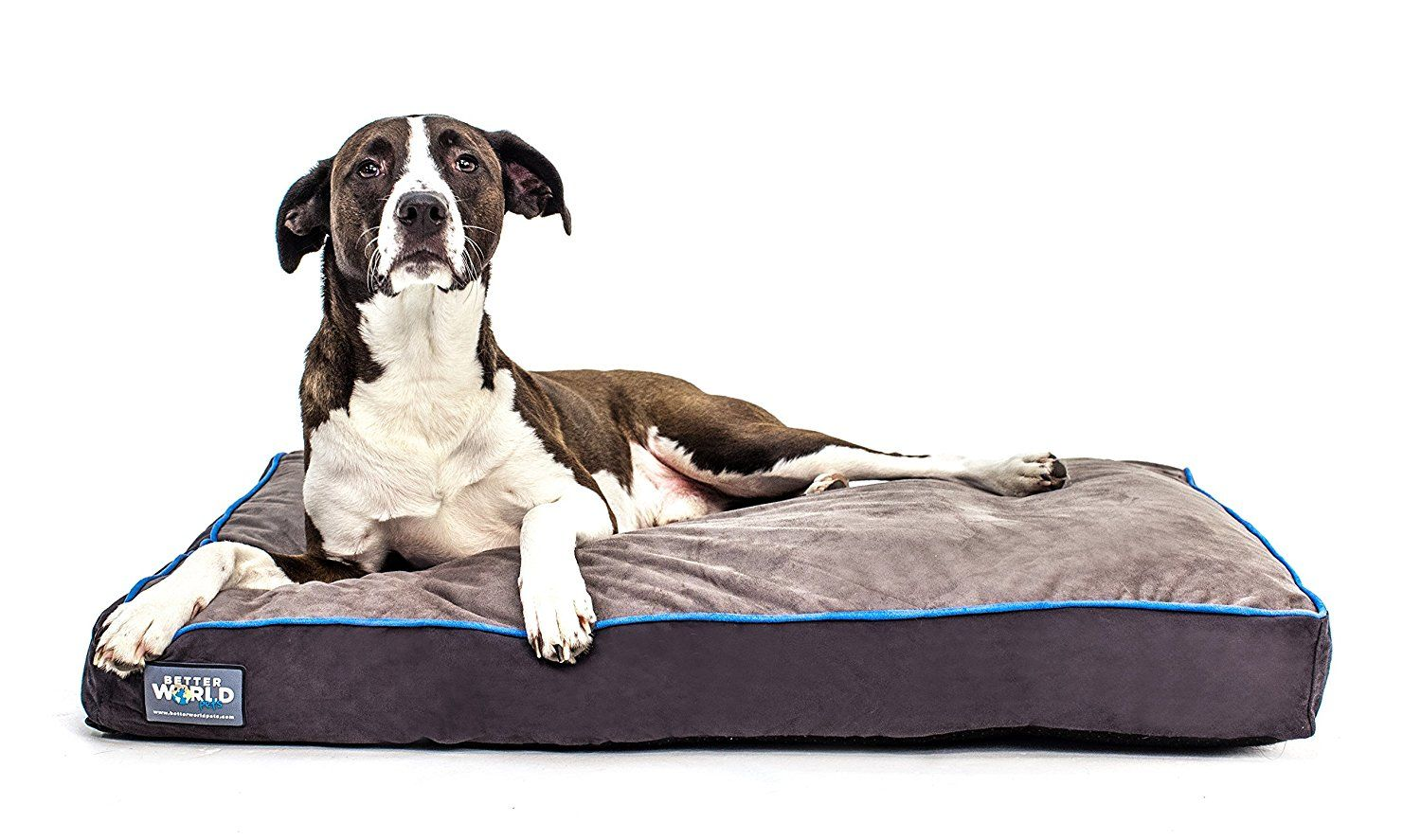 FirstQuality 5' Thick Orthopedic Dog Bed Pure Premium