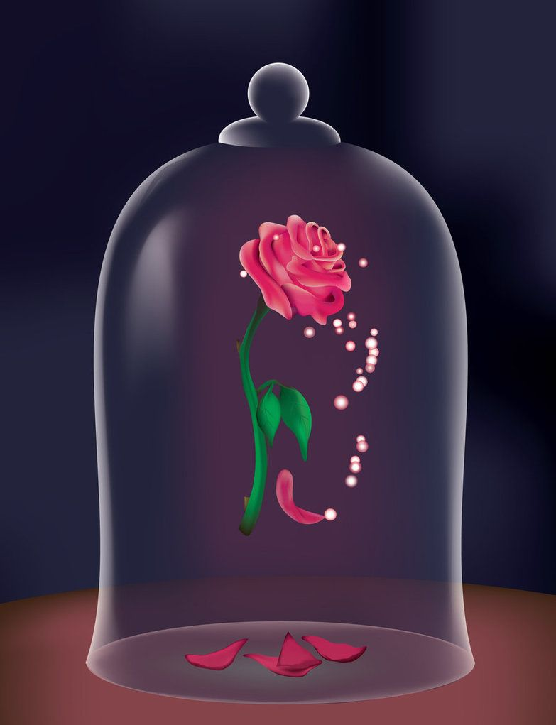 Remember this from beauty and the beast? There should be ... Beauty And The Beast Rose