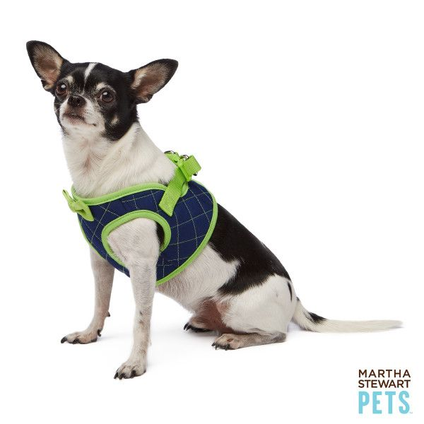 Martha Stewart Pets Quilted Bowtie Dog Harness Harnesses