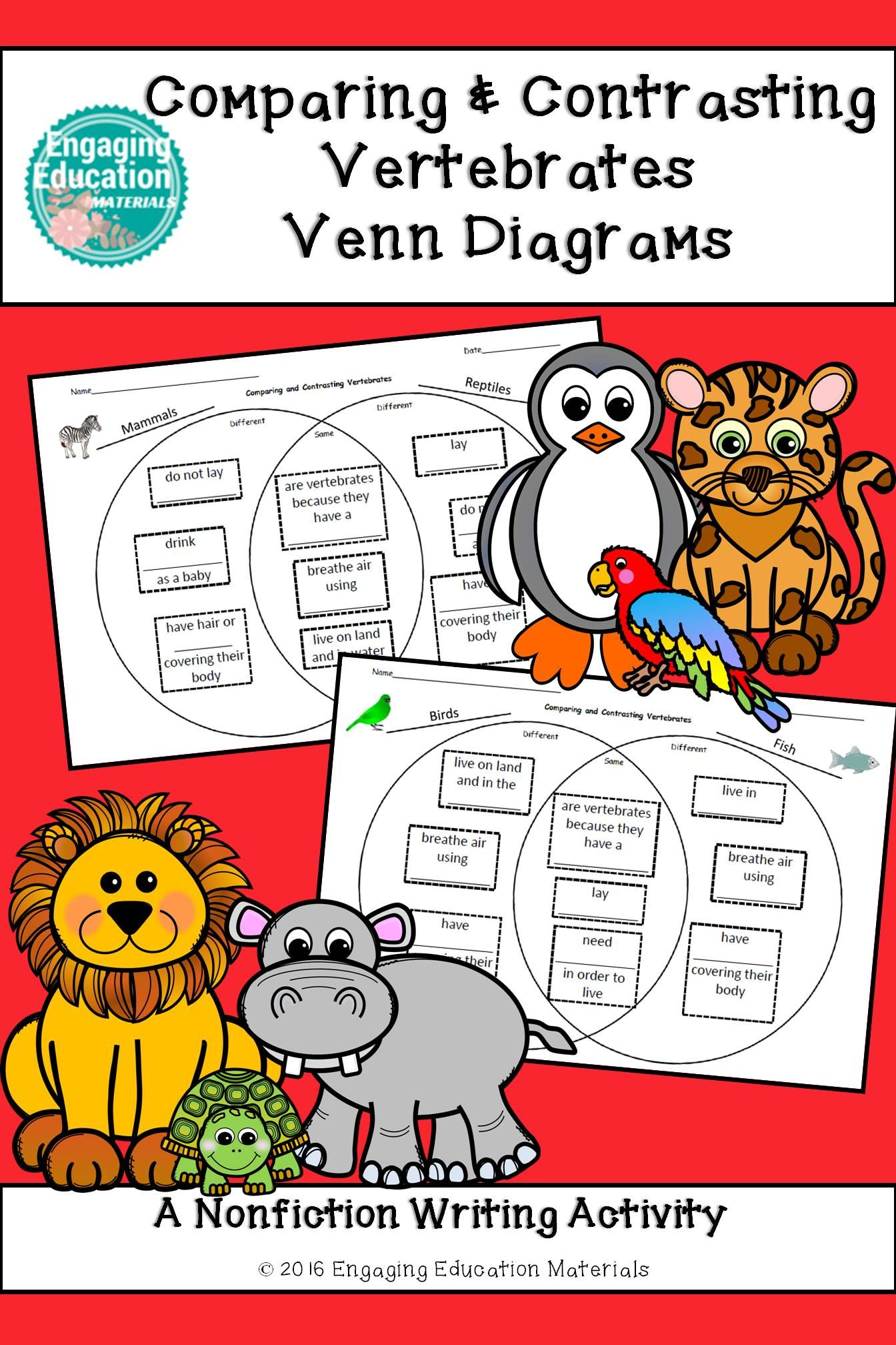 First Amp Second Grade Venn Diagrams To Compare And Contrast