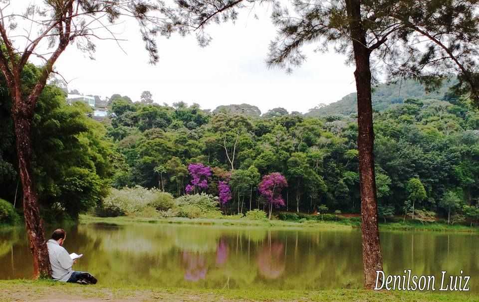 Parque Natural Municipal Da Lajinha Juiz De Fora