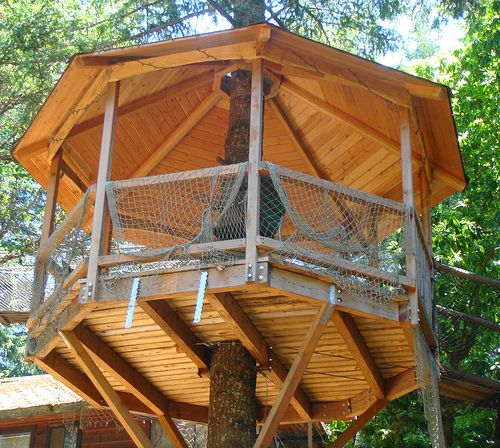 Treehouse Tree House Designs Tree House Plans Tree House Diy