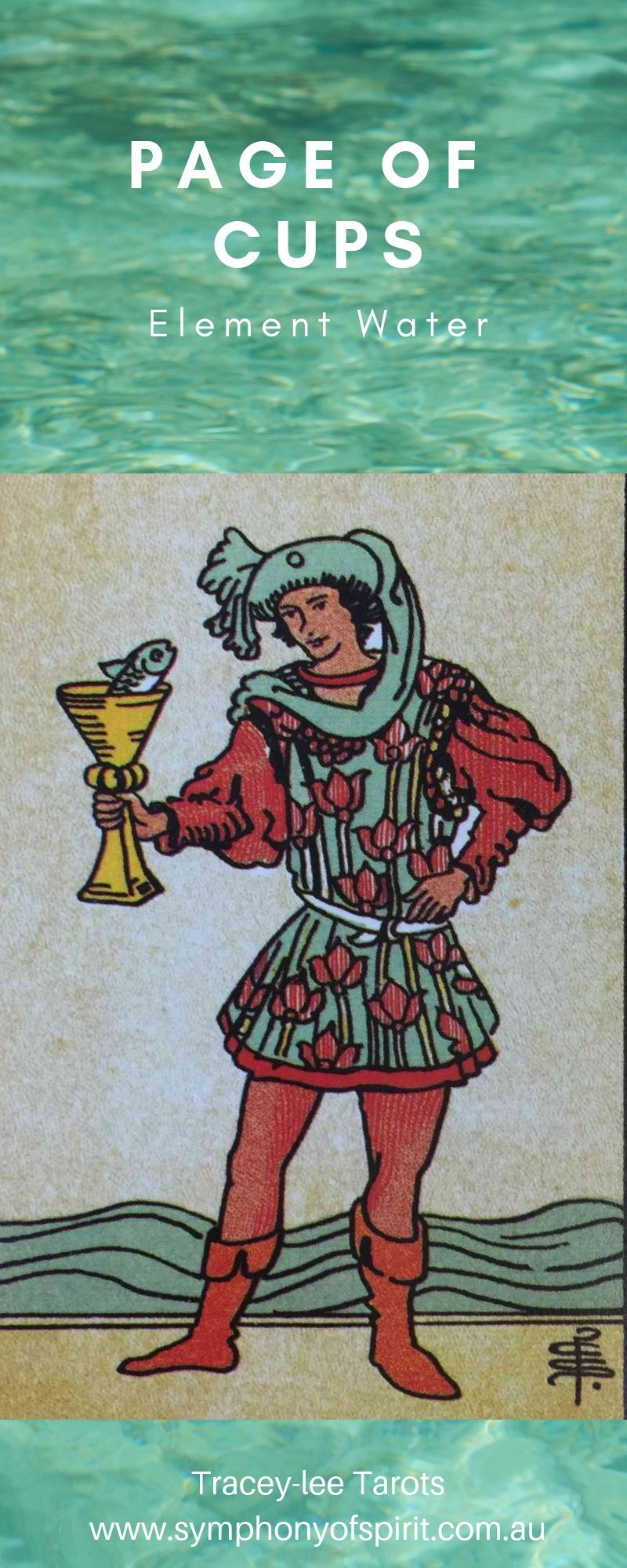 PAGE of CUPS His Role : He sends the word: 💚love is in the
