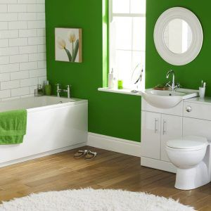 Bathroom Designes Fascinating Bathroom Decor Ideas Green  Httptechnologytrap Design Ideas
