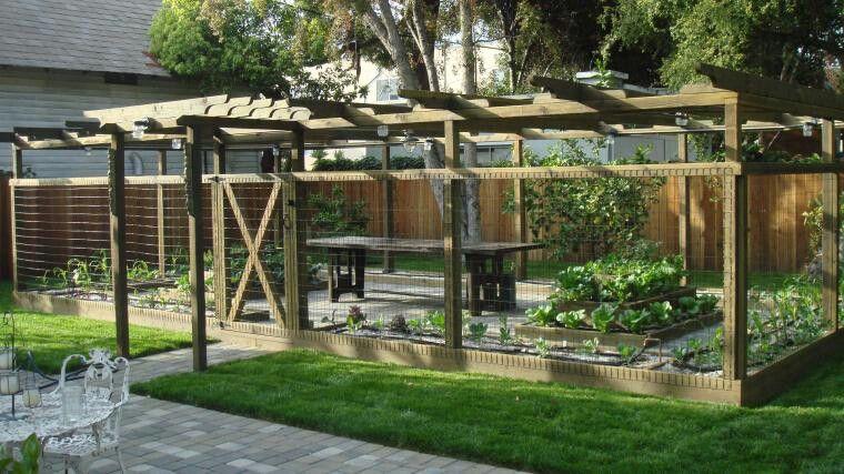 Enclosed Garden Area Home Vegetable Garden Design 400 x 300