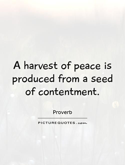 Quotes About Contentment Peace 47 Quotes Contentment Quotes Quotes Word Of The Day
