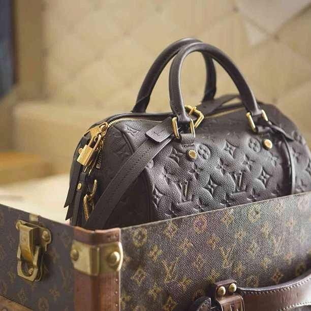 784f0ef74fba Louis Vuitton purse and suitcase