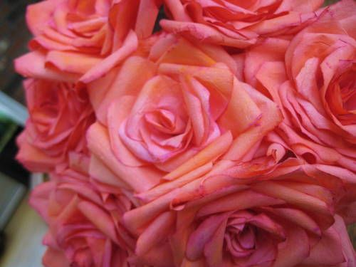 inspiration photo of coffee filter rose