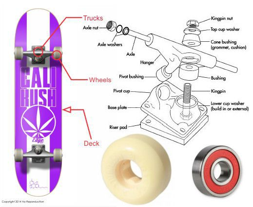 Diagram Of A Skate Block And Schematic Diagrams