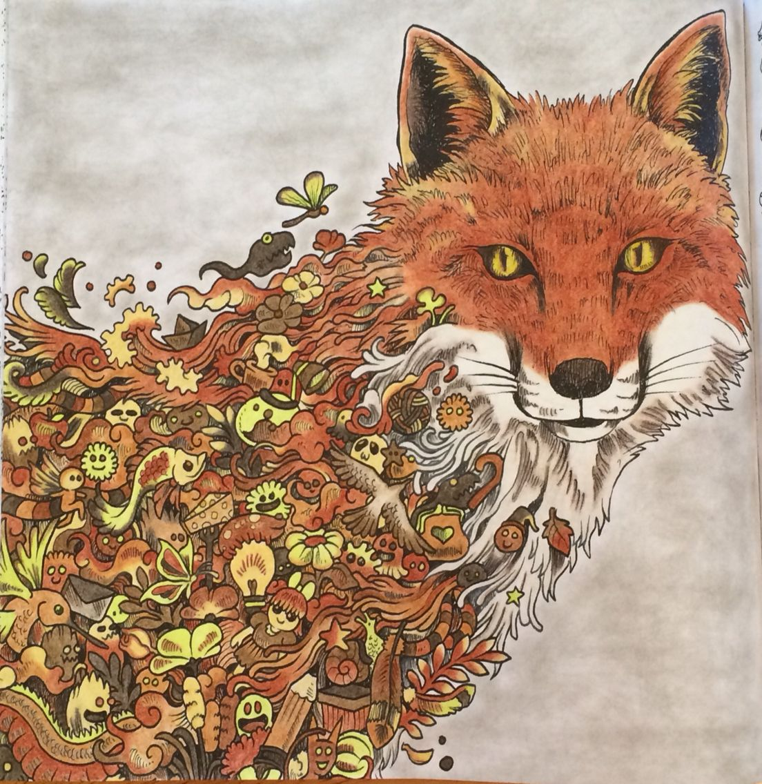 What Does The Fox Say Adult Coloring Animorphia Kerby