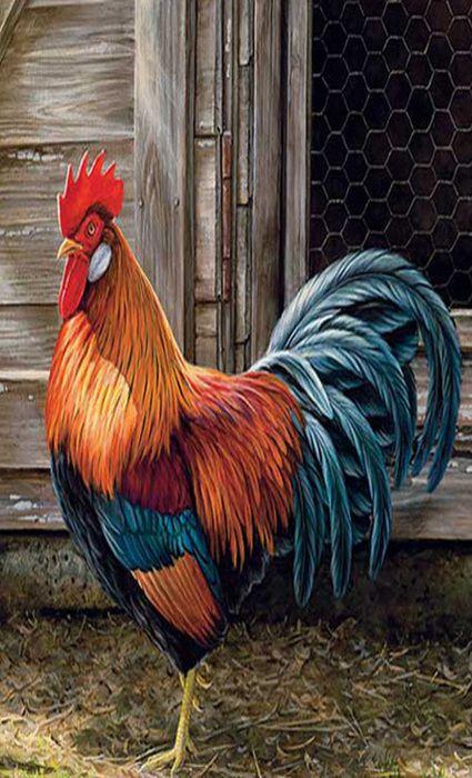 Rooster Painting Rooster Painting Rooster Art