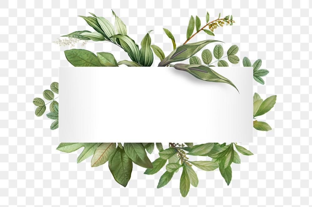 Watercolor Floral Banner Png Image With Transparent Background Png Free Png Images Floral Watercolor Floral Banners Free Png