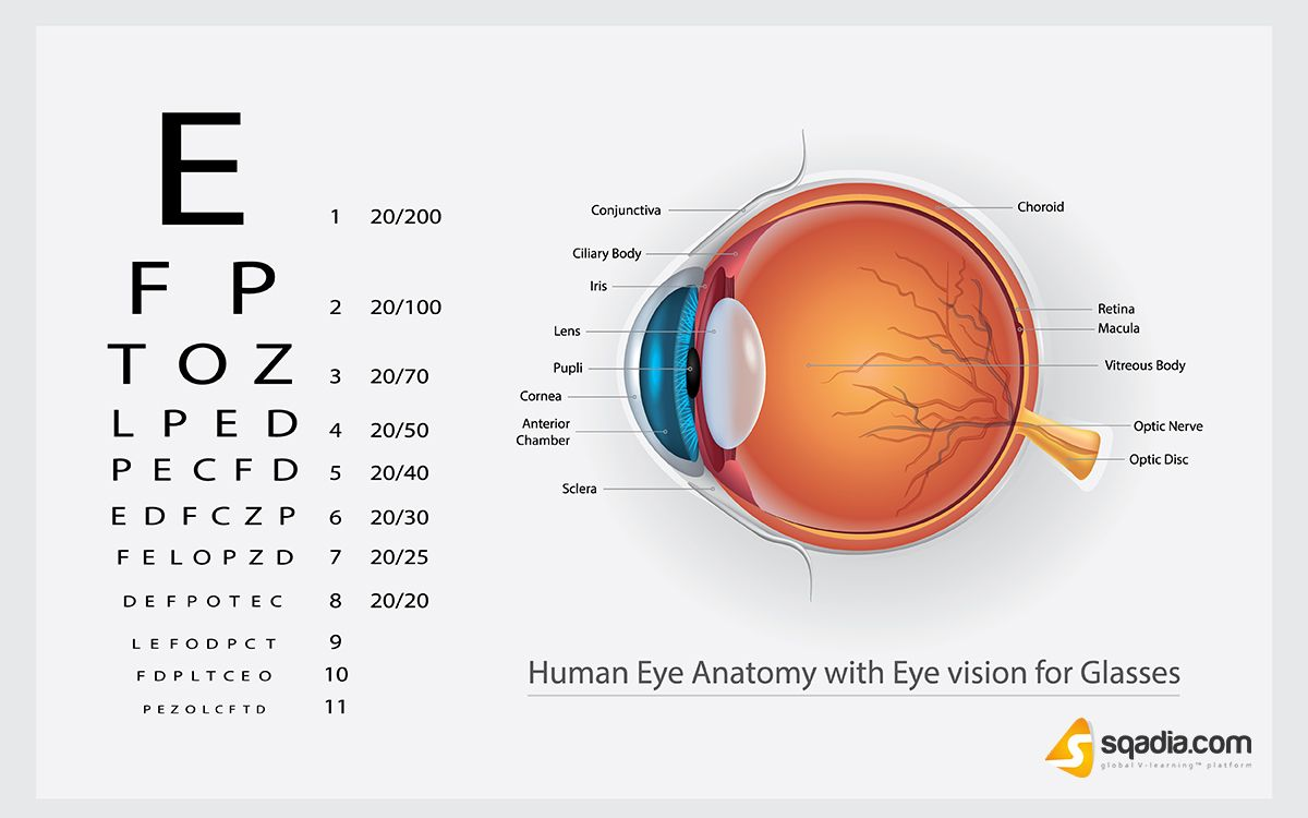 The Most Common Vision Problems Are Refractive Errors More