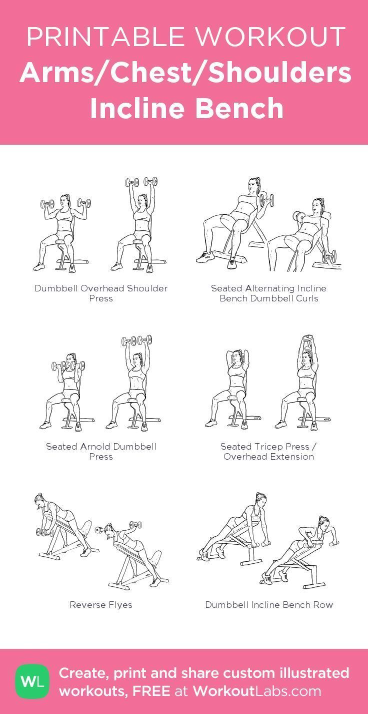 Arms Chest Shoulders Incline Bench my visual work ArmsChestShoulders Benchmy Fitness Arms Chest Shou...