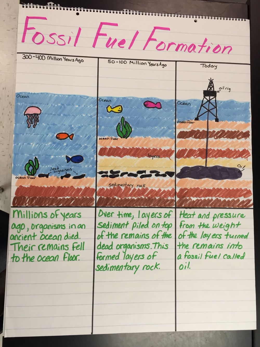 Fossil Fuel Formation Anchor Chart Fourth Grade Science