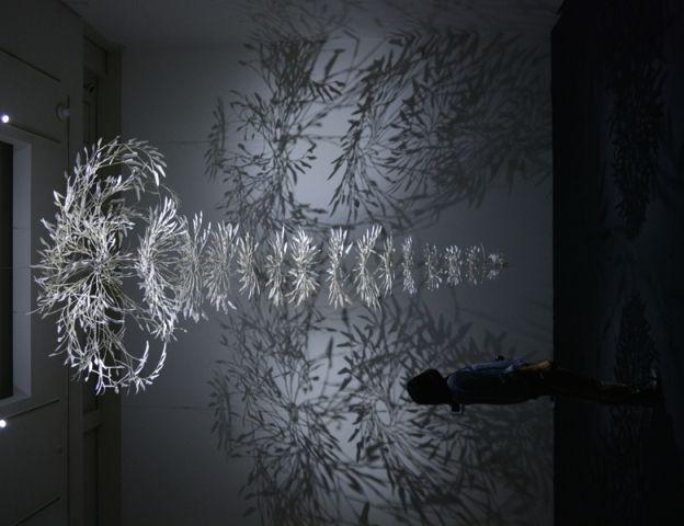 tree branch shadow chandelier google search