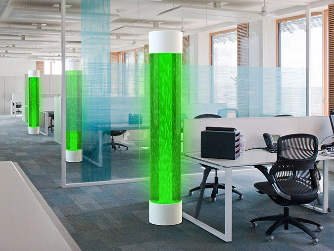 Algae-Powered Lamp There's something very special about ...