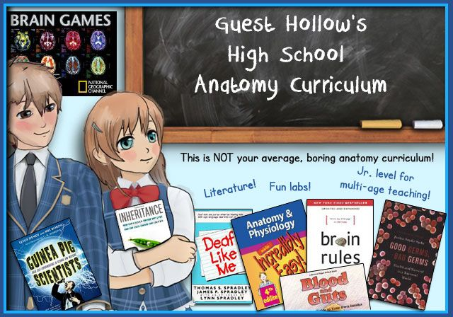 Free Homeschool anatomy curriculum (high school) | Free Curriculum ...