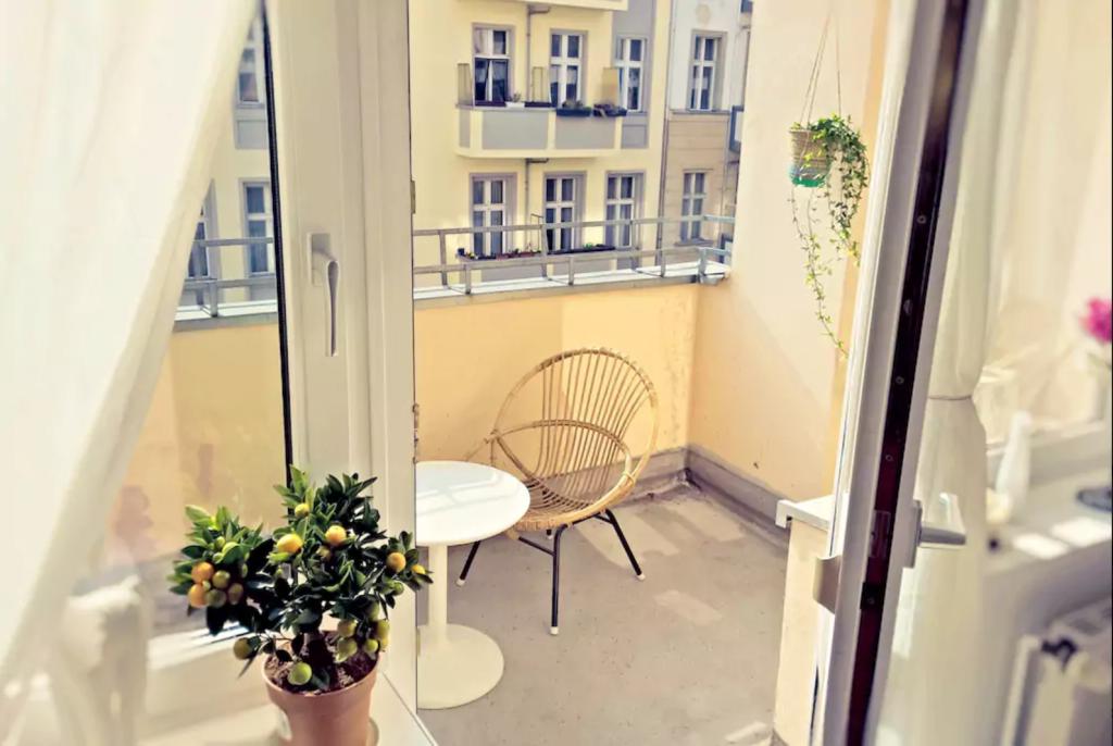 Gartendeko Berlin, schöner traumbalkon in berlin. #balcony #zitronenbaum #sommergefühle, Design ideen
