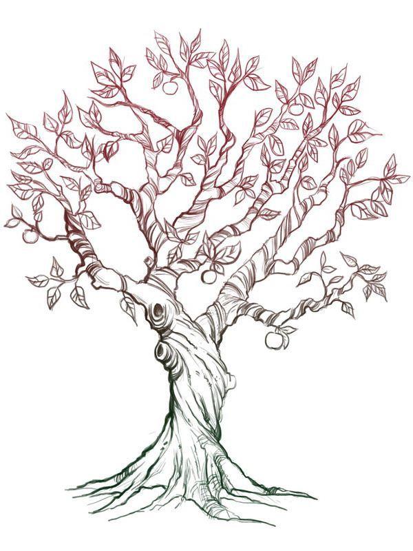 apple tree tattoo in 2019 tree sketches tattoos drawings Apple Bud apple tree