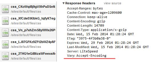 How To Specify A Vary Accept Encoding Header In Wordpress