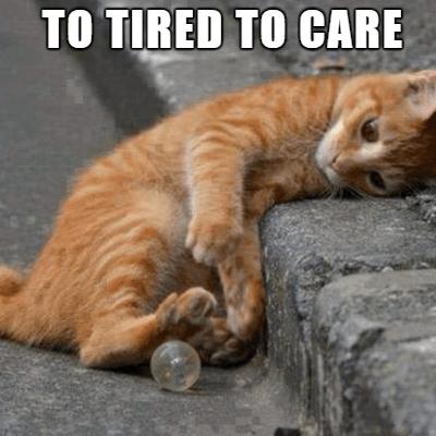 20 Tired Meme Cute Love Memes Thug Life Meme Funny Memes