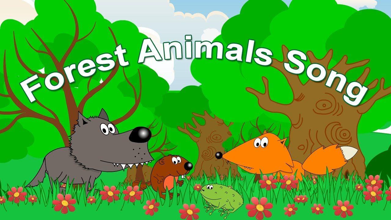 16++ Rainforest animals for kids ideas in 2021