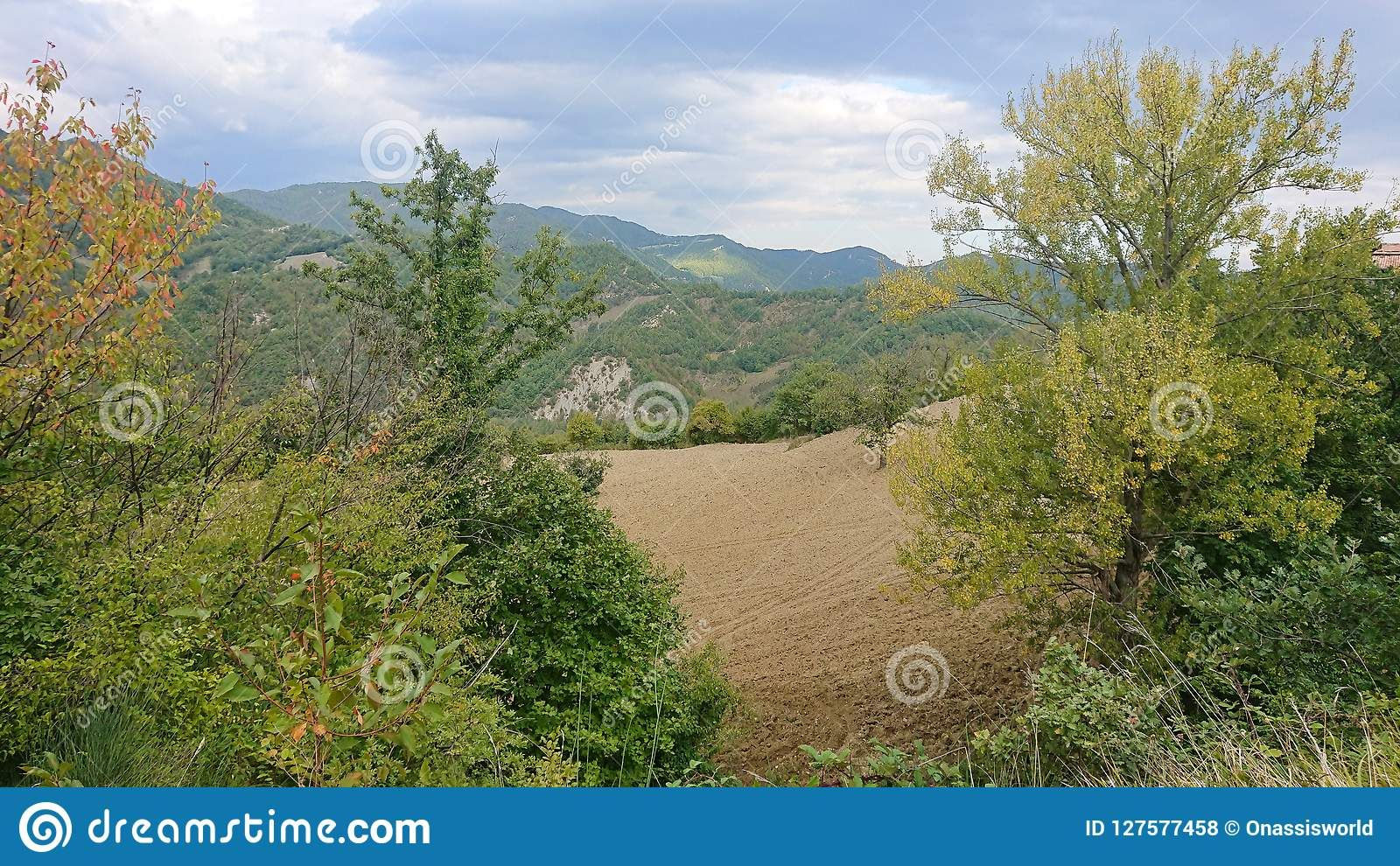 Photo About A Panoramic Landscape Of Green Fields Mountains And Trees Image Of Mountains Fields Landscape 1275774 Country Landscaping Landscape Panoramic