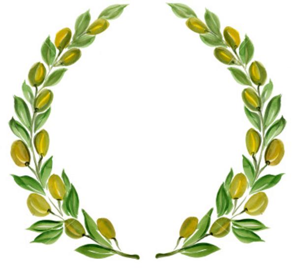 13128457631360962488istockphoto 596149 Olive Branch Wreath Hi Png 600 545 Olive Wreath Wreath Clip Art Olive Branch Wreath
