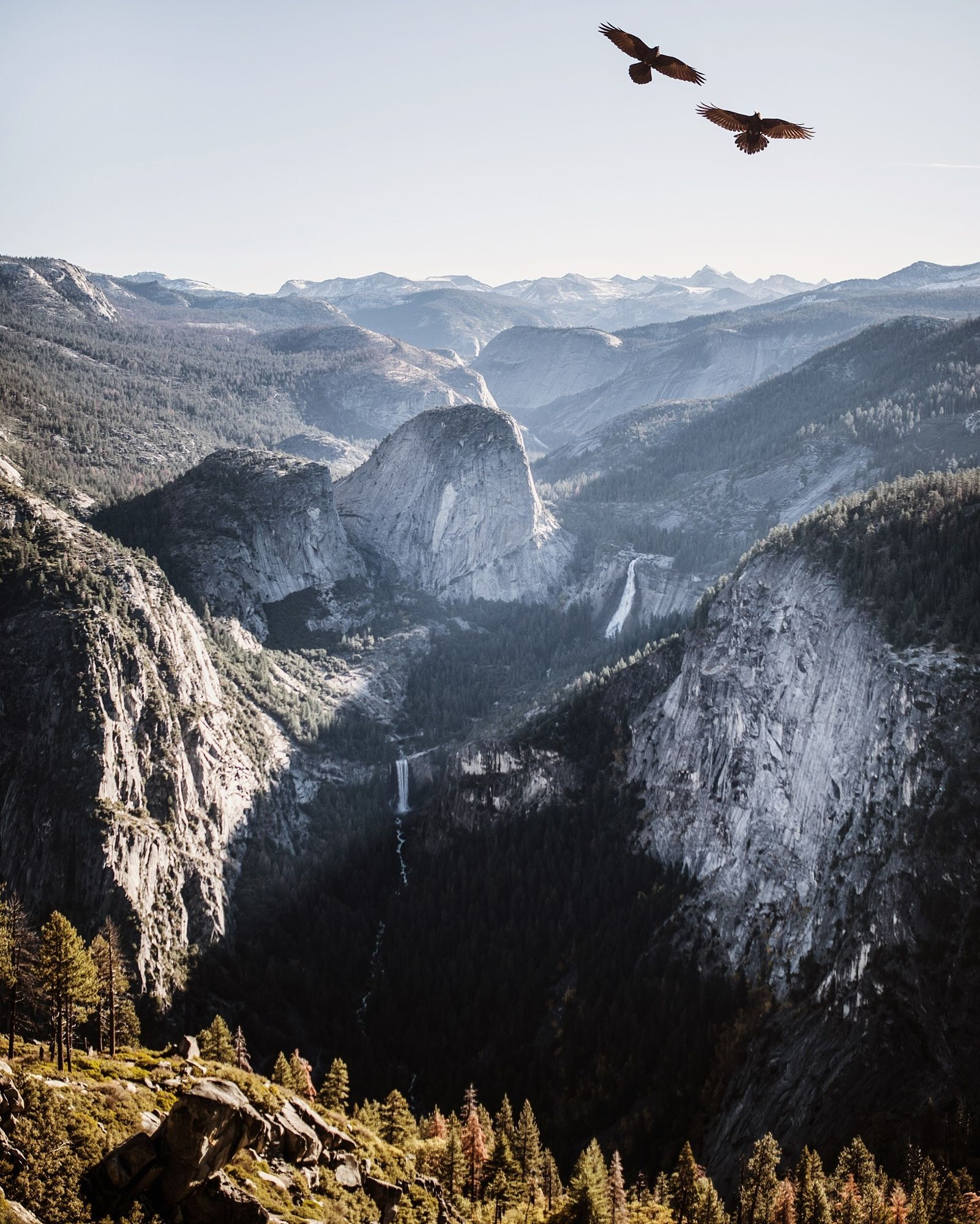 murder of crows. washburn point. vernal and nevada falls. yosemite. california.  Landscapes photo by tannerwendell http://rarme.com/?F9gZi