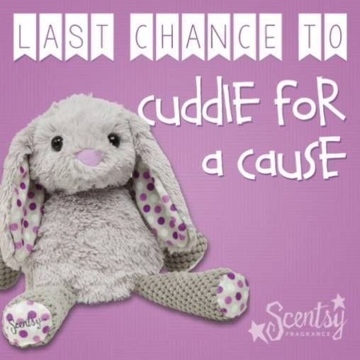August is your last chance to cuddle for a cause with Roosevelt! If you've been thinking of getting your hands on one, now is the time! #Scentsy #MarchofDimes #Roosevelt #addictedtoScentsy