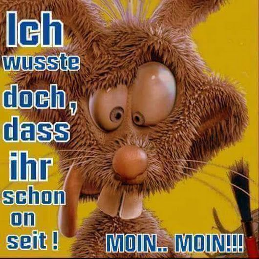 Guten Morgen Gruß Witzig Suga Bears Good Morning Good Night Und