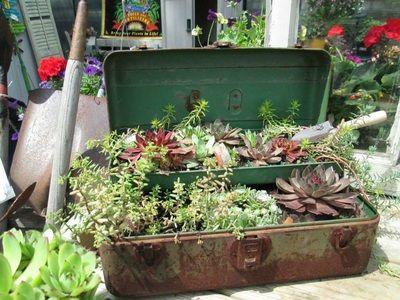 Oak Village Garden Center & Landscape Service - Home