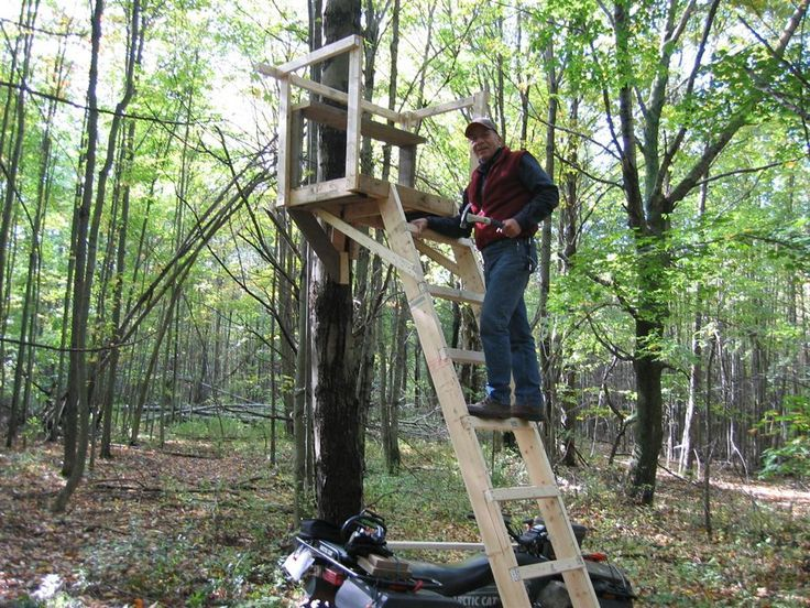 Image Result For Pictures Of Homemade Tree Stands