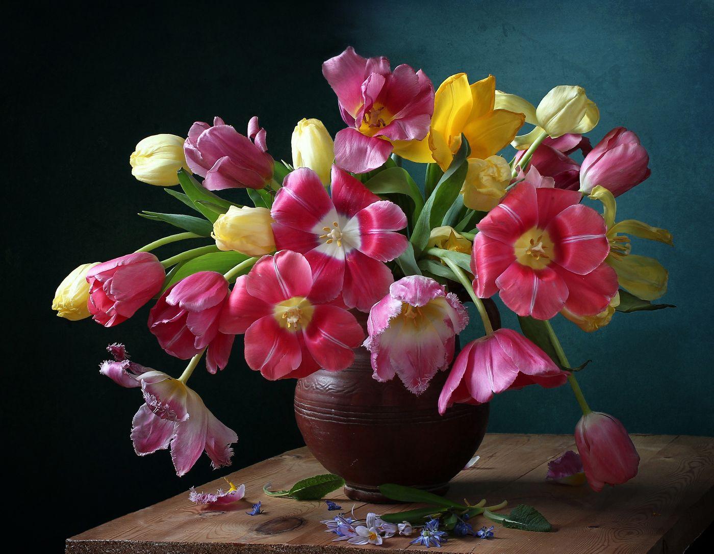 Фотография Предвестники весны из раздела натюрморт ...