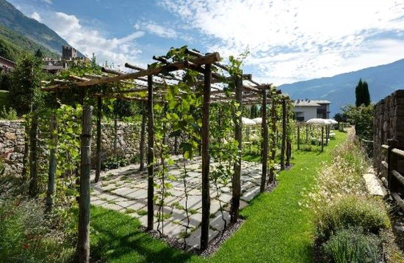treille vigne en bois faire une pergola ou une treille. Black Bedroom Furniture Sets. Home Design Ideas