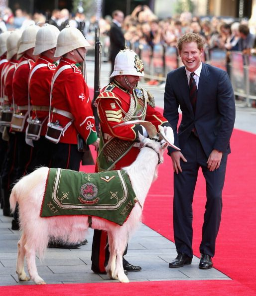 Prince Harry chats to Sgt Major Mark Jackson who is looking after the Regimental Mascot of the 3rd Battalion Welsh Guards 'Shenkin' as he arrives for the 50th anniversary screening of Zulu at Odeon Leicester Square on June 10, 2014 in London, England.