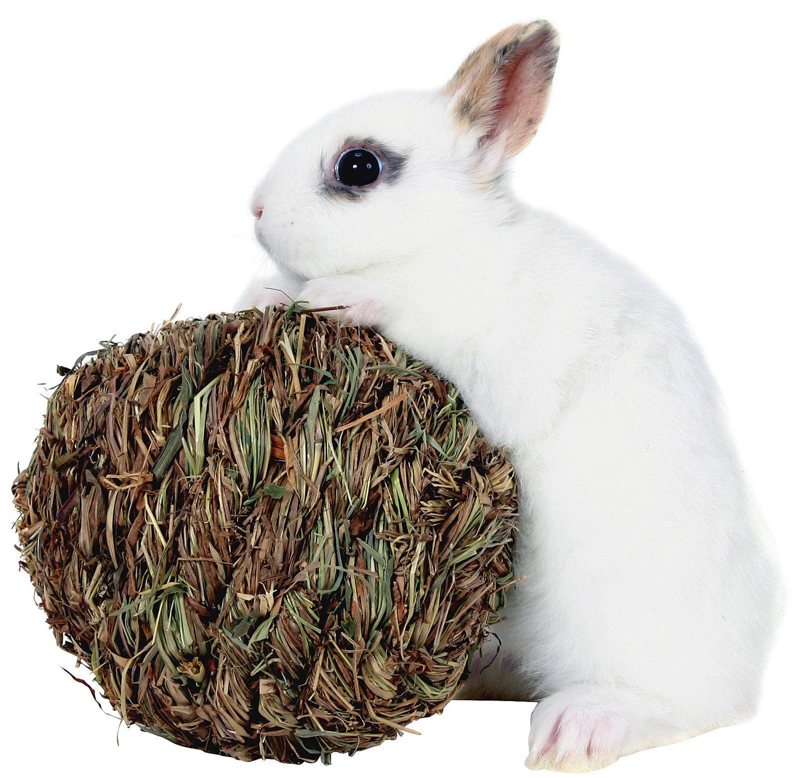 Peters woven grass play ball pet ball small pets