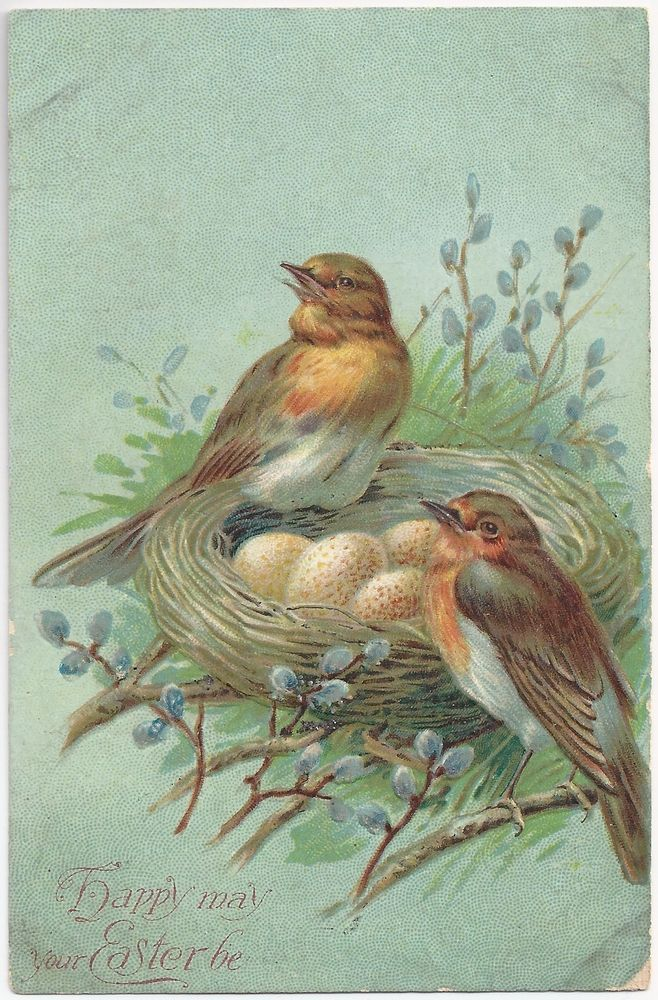 birds with nest and bluegreen background Easter