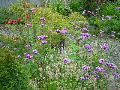 Julia's Gardens