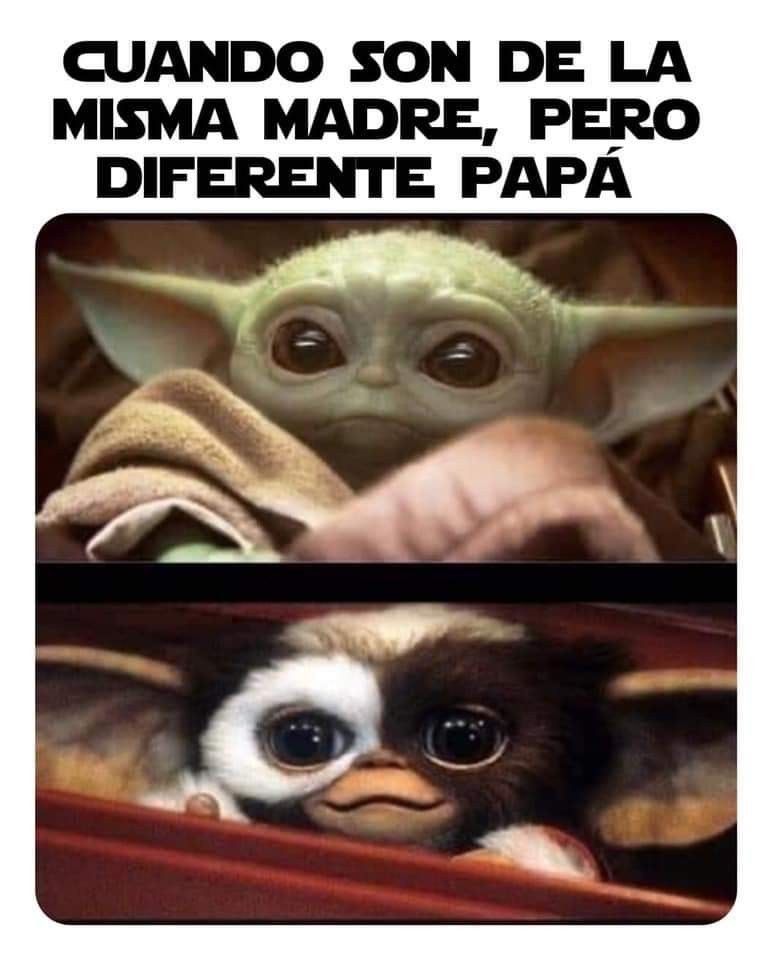 Pin By Luci On Childfree Funny Memes Yoda Memes
