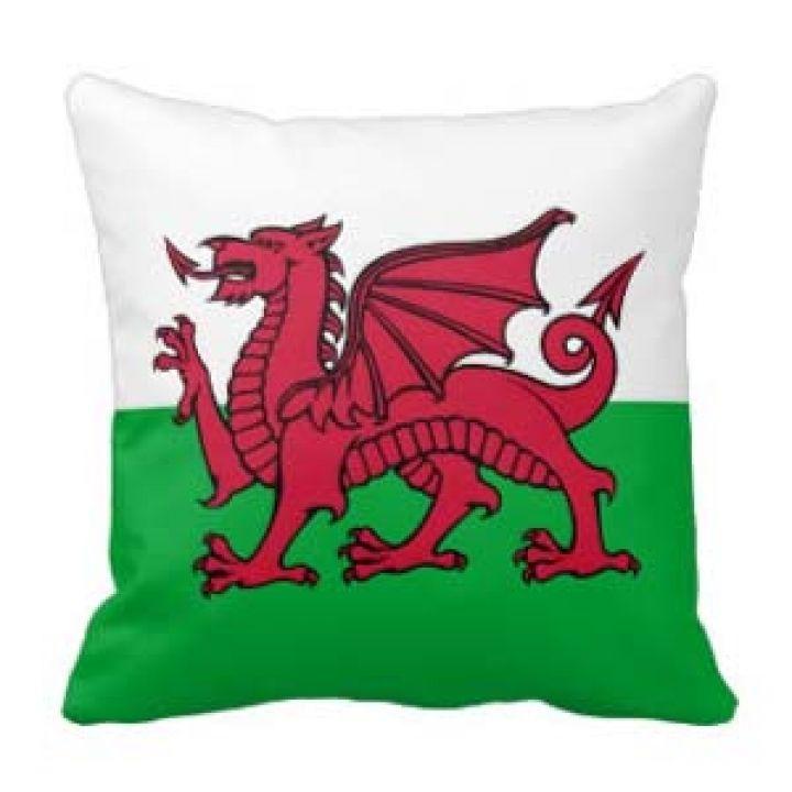None Welsh Flag Cushion Welsh Flag Wales Flag