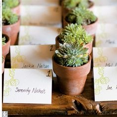 succulent place card holders - Google Search